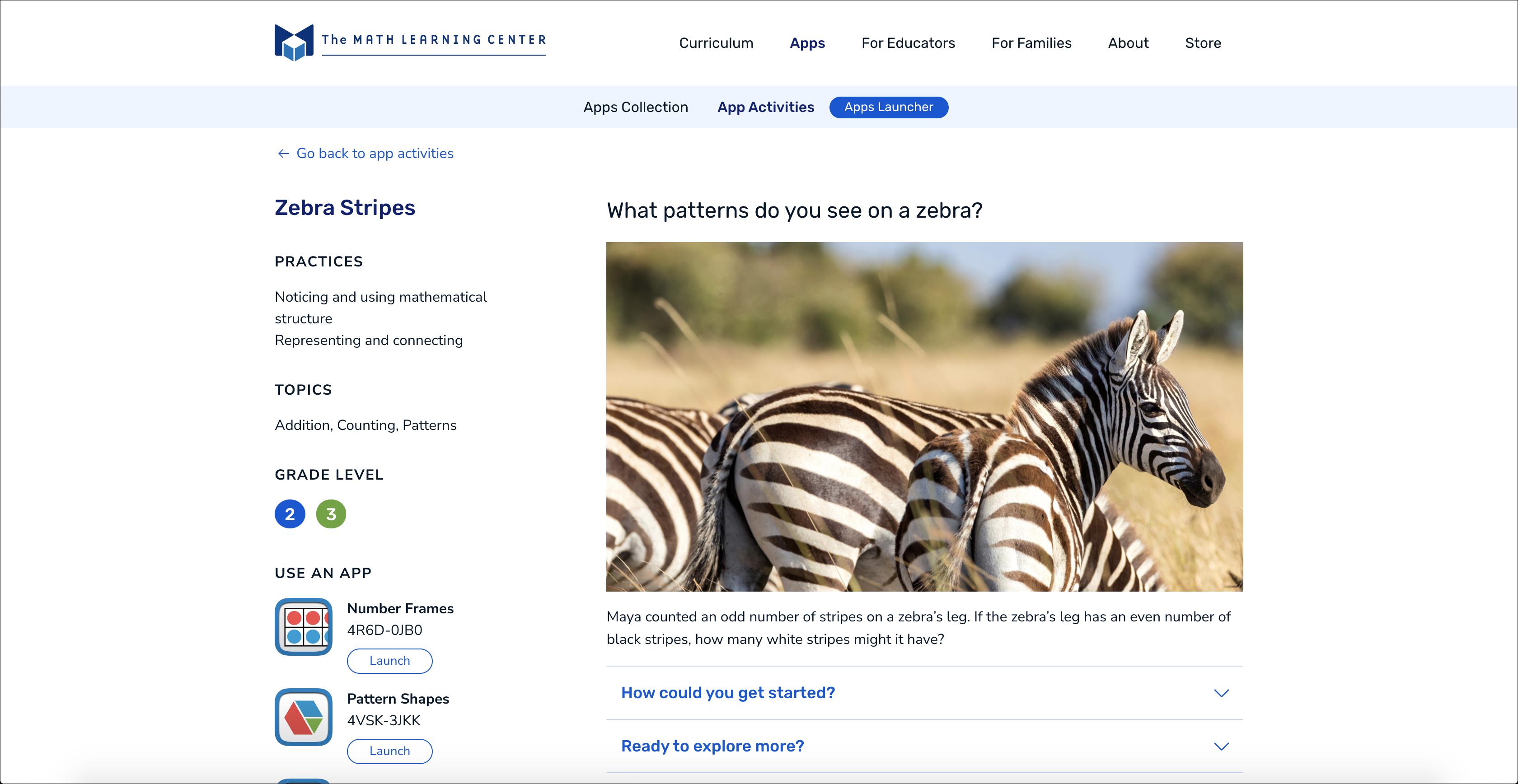 Zebra Stripes App Activity